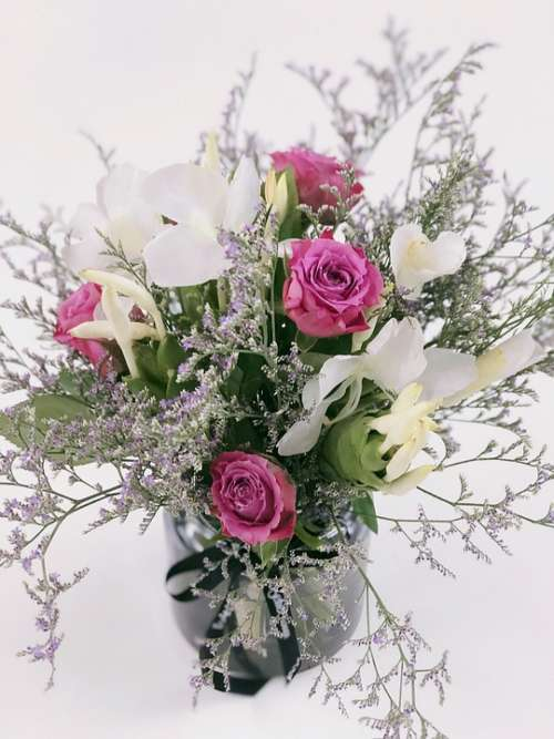Flowers Flower Flower Arrangement