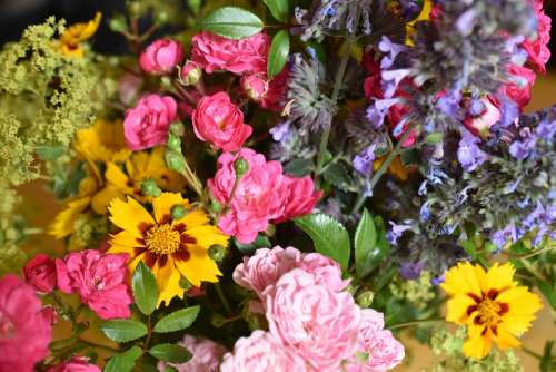 Flowers Colorful Bouquet Of Flowers Yellow Red Pink
