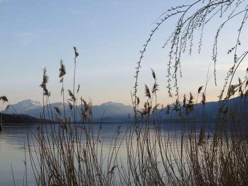 France Lake Aix Les Bains Mountain Water Green