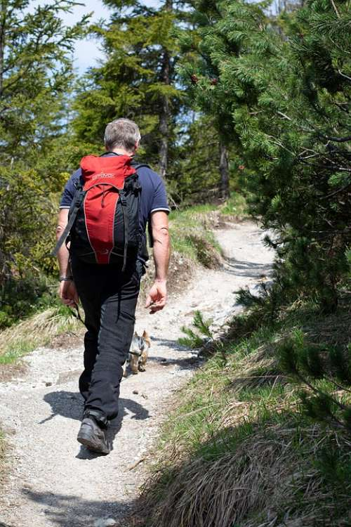 Hiking Person Hike Human Backpack Away Trail