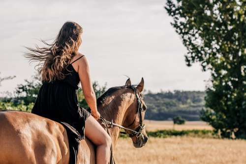Horse Girl Ride Trot Woman Nature Beauty