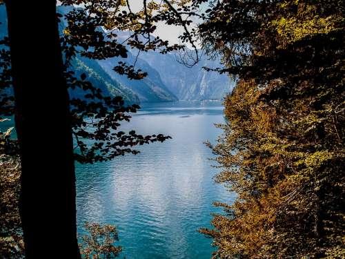 Landscape Lake Water Nature Königsee View Travel