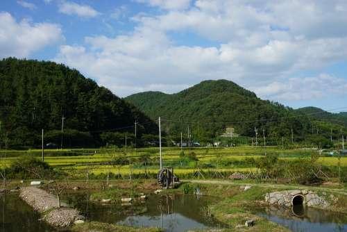 Landscape Nature Park Green