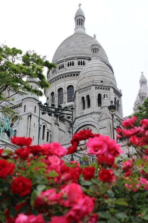 Montmartre Paris Roses City Architecture Famous