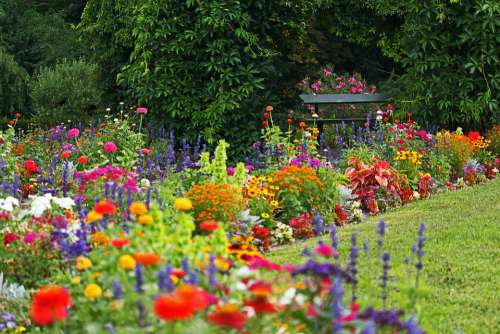 Park Colorful Flower Beds Orangery Potsdam Nature