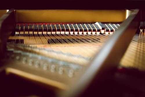 Piano Key Inside Piano Keys Music Keyboard