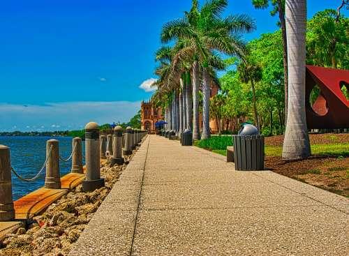 Promenade Florida Sea Water Ringling Palm Trees