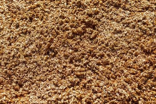 Rape Residues Pressed Cereals Beer Brewery Fund