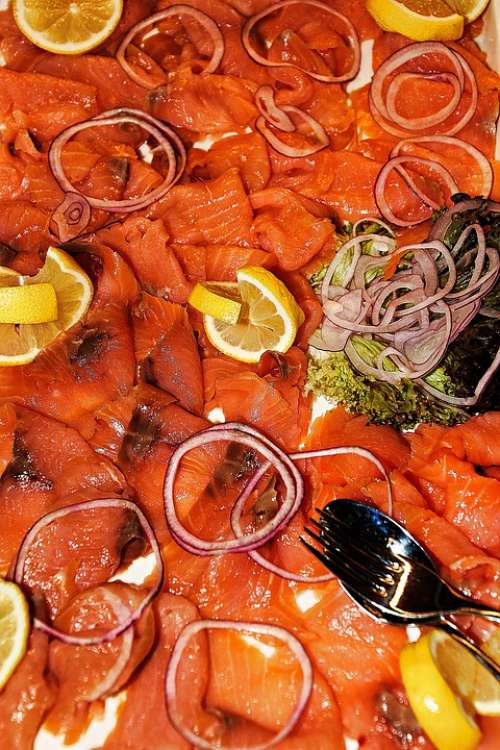 Salmon Fish Food Delicious Healthy Fresh Smoked