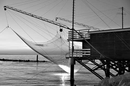 Sea Network Fishing Casino Fishing Water Nature