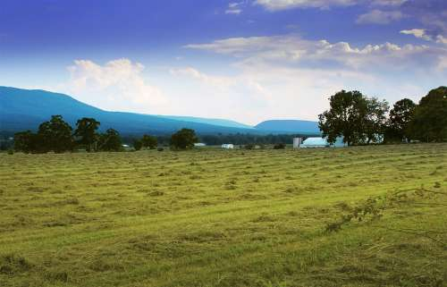 Shenandoah Valley Farm Countryside Rural Meadow