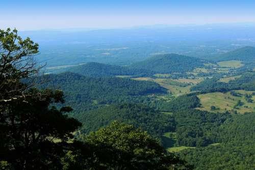 Shenandoah Valley Virginia Summer Nature