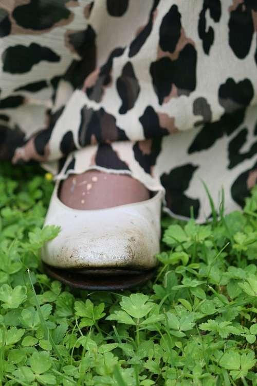 Shoes Leopard Poor Grass Sole Broken Carnival