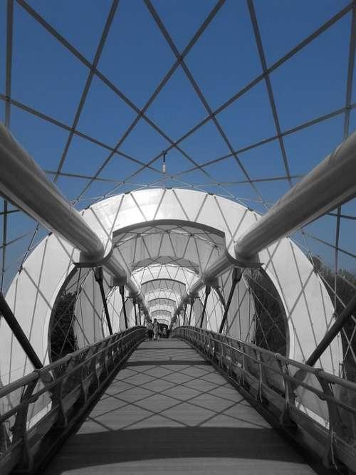 Silkworm Bridge Bridge Construction Photo