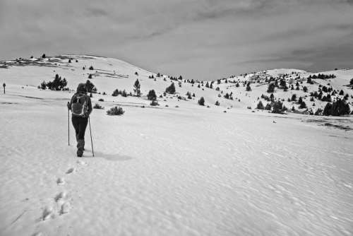 Snow Skimo Black And White Mountain Nature