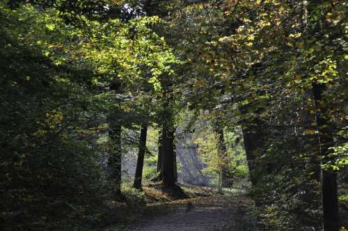 Stuttgart Wildlife Park Autumn Forest Meadow Mood