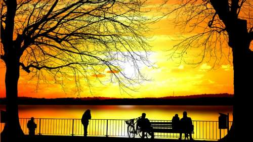 Sunset Lake Bench People Landscape Nature Water