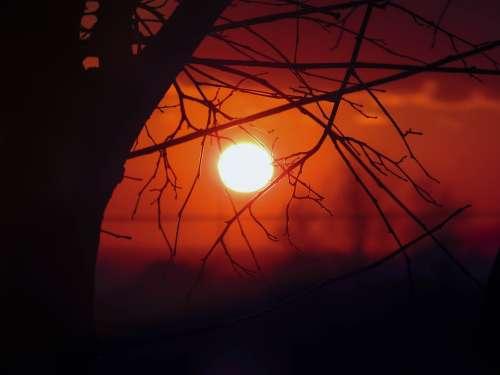 Sunset Sun Sky Landscape Nature Horizon Trees