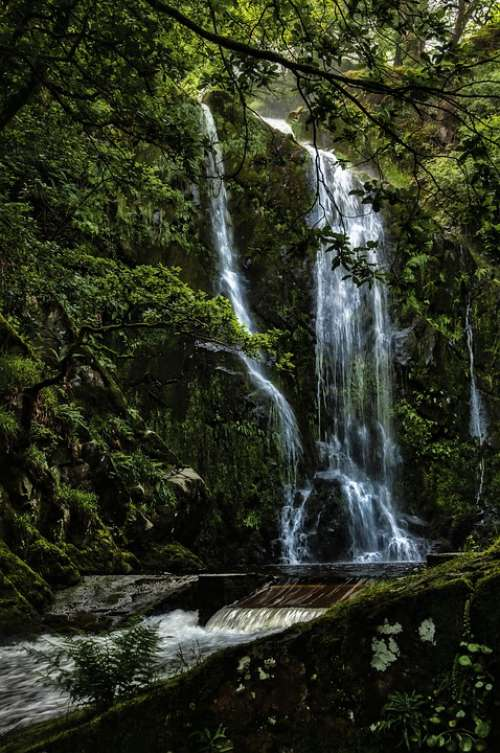 Water Falls Woodland Waterfall Cascade Scenic