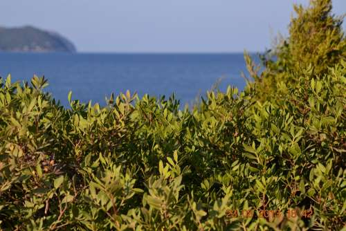 Water Island Sea Vacations Landscape Summer