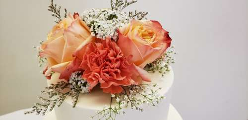 Wedding Flower Rose Roses Floral Celebration