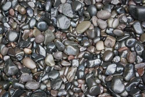 Wet Pebbles Stones Stony Pebble Nature River