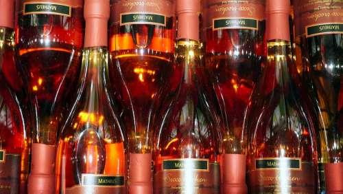 Wine Bottles Wine Rack Cellar Storage Alcohol