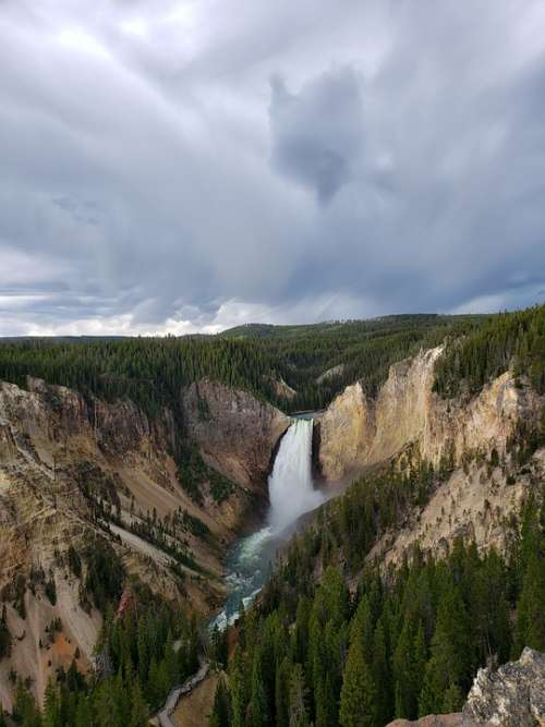 Yellowstone Falls Grand Canyon Trees River