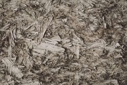 Abstract Wood Chips Photo