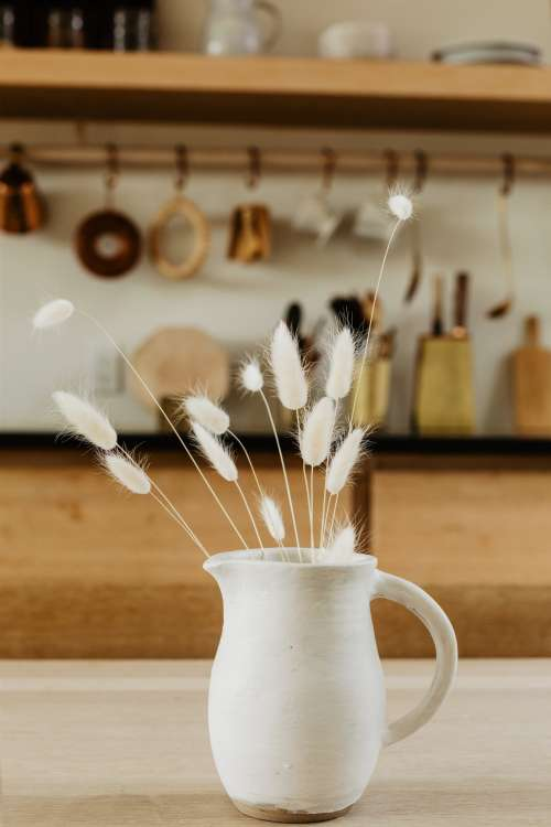 Old White Dandelions In A White Jug On A Wooden Table Photo
