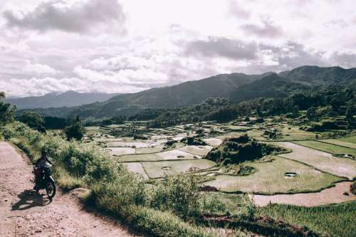 Sunshiney Indonesian Valley Filled With Rice Paddies Photo