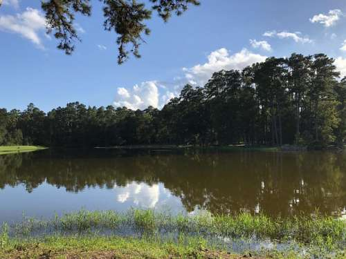 Sam Houston Recreation Area San Jacinto County Texas lake water trees