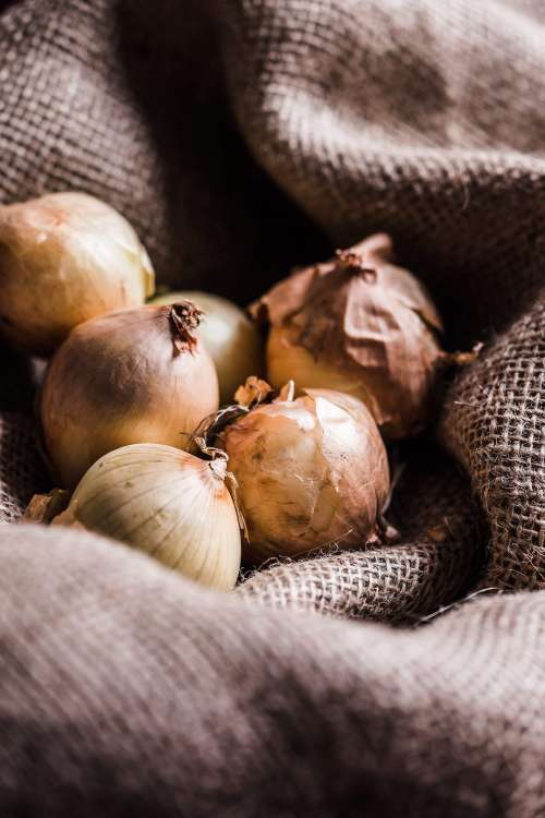 Onions in Sack Vertical Free Photo