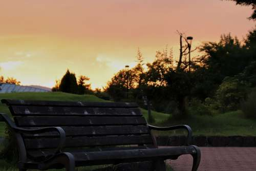 Bench Park Sunset Landscape Seat Outdoors