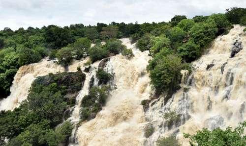 Bharachukki Waterfall Waterfalls Cauvery Nature