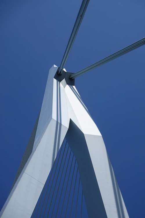 Erasmus Bridge Rotterdam Netherlands City Bridge