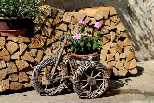 Garden Design Flowers Wood Tricycle Summer