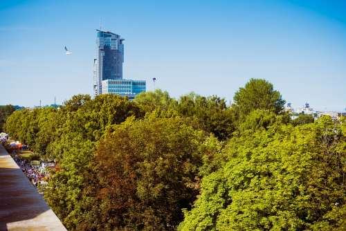 Gdynia Poland City Cityscape Tower Tree Top High