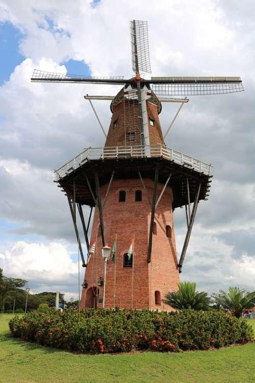 Holambra Mill Square Wind Texture Cornfield