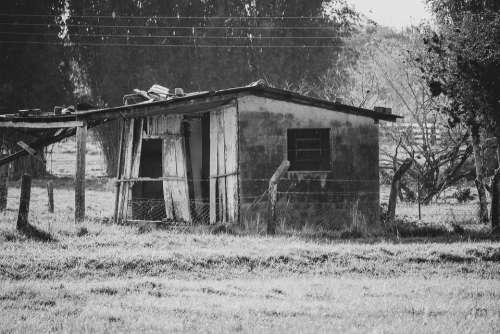 Home Nature Abandoned Interior Landscape Cabin
