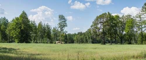 Landscape Season Forest Outdoor Shadows Meadow