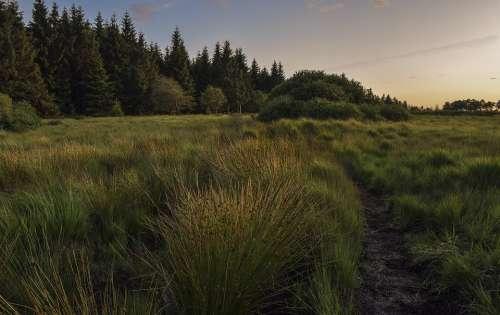 Nature Landscape Moor High Fens Clouds Sky Sunset