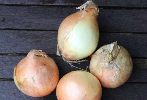 Onions Vegetable Healthy Bulb Fresh Food Group