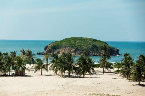 Phan Thiet Beach Sea Island Beautiful Coconut