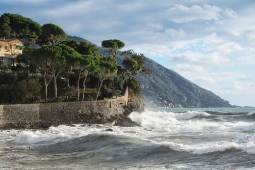 Recco Camogli Genoa City Sea Landscape Tourism