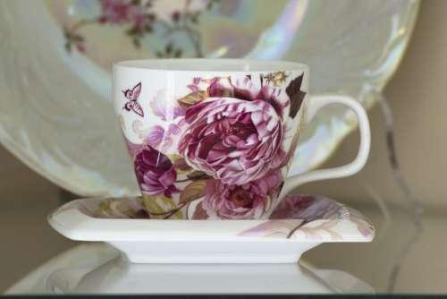 Teacup Saucer Porcelain