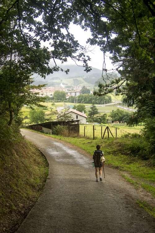 Tourism Traveler Nature Holiday Summer Woman