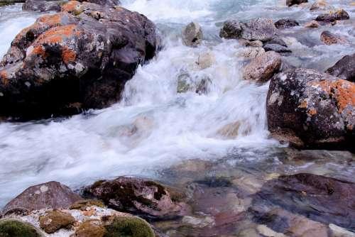 Water River Nature Moss Stone Wild