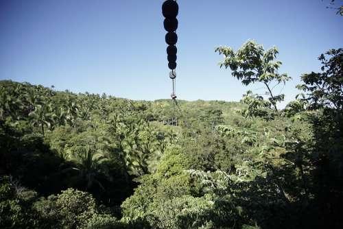Zipline Heights Greens Trees Challenge Outdoors