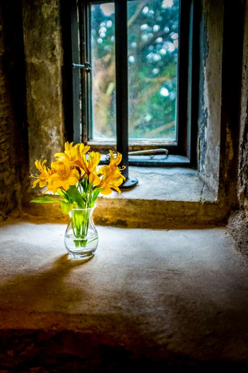flower vase window fresh gift